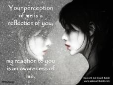 perception003